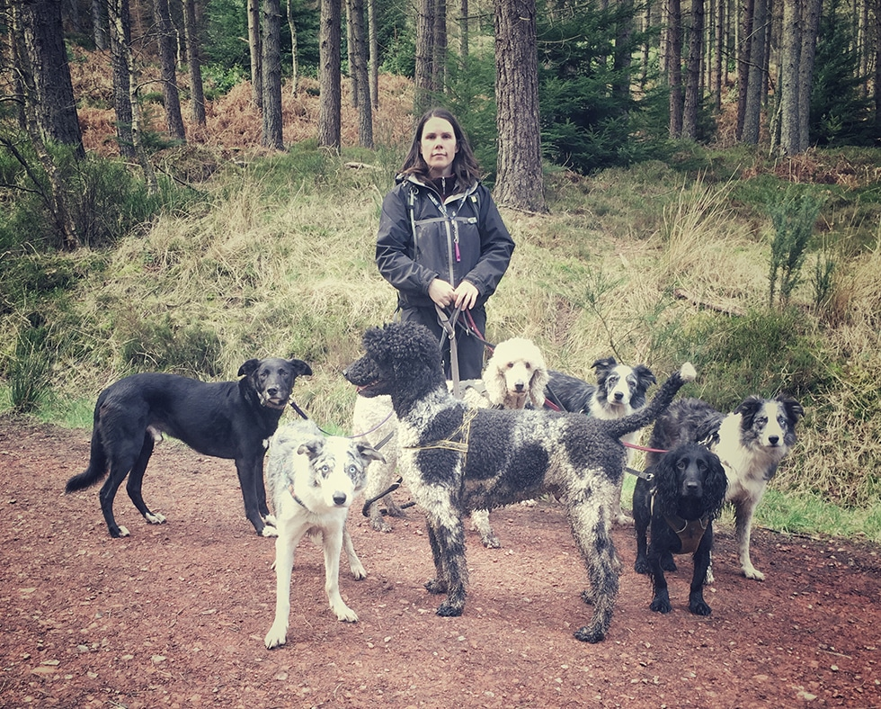 Caroline Dog Walking Group of Dogs in Forest